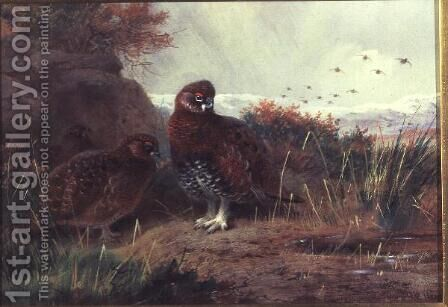 Grouse in a Winter Landscape by Archibald Thorburn - Reproduction Oil Painting