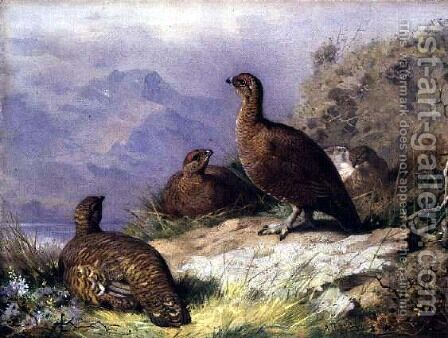 Red Grouse on the Shore of a Loch by Archibald Thorburn - Reproduction Oil Painting