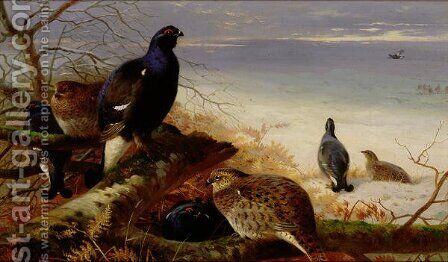 Blackgame, 1903 by Archibald Thorburn - Reproduction Oil Painting