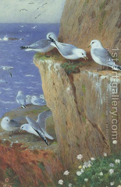 Seagulls by Archibald Thorburn - Reproduction Oil Painting