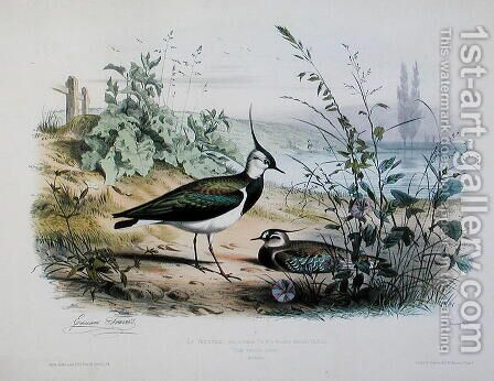 Female and Male Lapwing by Edouard Travies - Reproduction Oil Painting