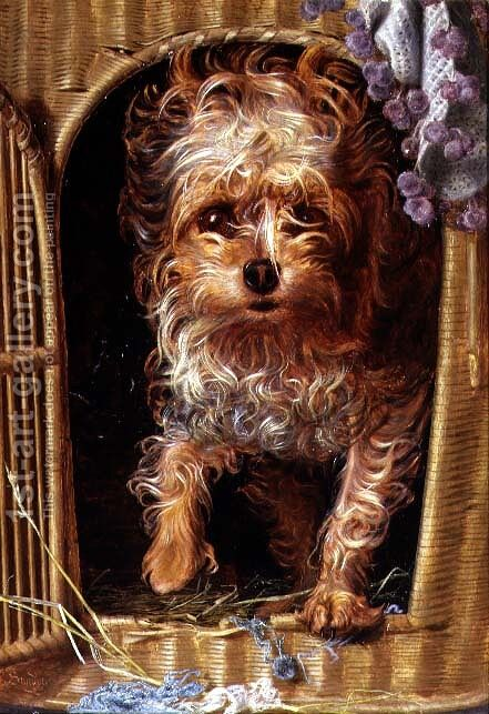 Darby, a Yorkshire Terrier by Anthony Frederick Sandys - Reproduction Oil Painting