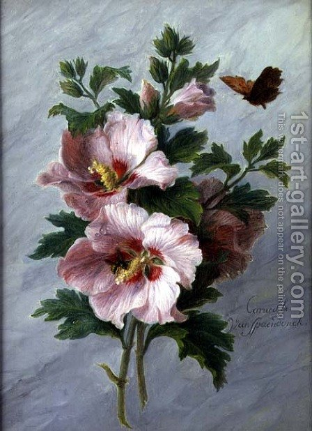 Hibiscus against a Marble Ledge by Cornelis van Spaendonck - Reproduction Oil Painting