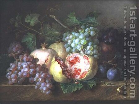 Still life of pomegranates, grapes and plums on a marble ledge by Cornelis van Spaendonck - Reproduction Oil Painting