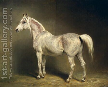 Beatrice, the white arab saddlehorse of Helmuth Graf von Moltke, 1855 by Carl Steffeck - Reproduction Oil Painting