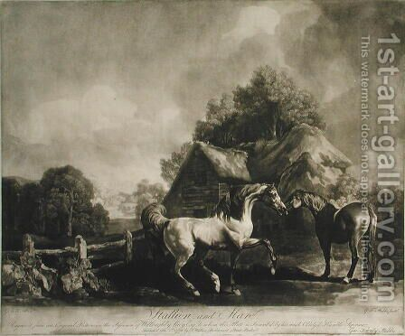 Stallion and Mare, engraved by George Townley Stubbs 1756-1815 1776 by (after) Stubbs, George - Reproduction Oil Painting