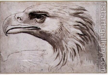 Head of an Eagle, c.1527-8 by Giulio Romano (Orbetto) - Reproduction Oil Painting