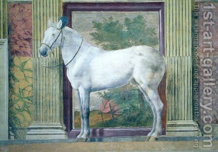 Sala dei Cavalli, detail showing a portrait of a grey horse from the stables of Ludovico Gonzaga III of Mantua, 1528 by Giulio Romano (Orbetto) - Reproduction Oil Painting