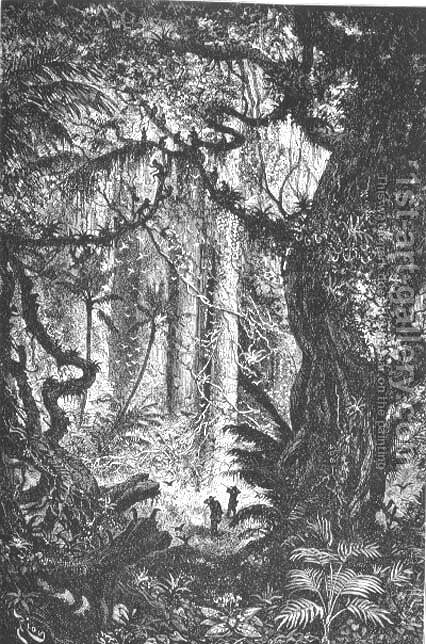 Jungle in the Esmeraldas, Equador, page 121 from To Equador, engraved by Charles Barbant, 1881 by Edouard Riou - Reproduction Oil Painting