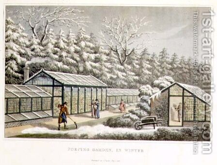 Forcing Garden in Winter, from Fragments on the Theory and Practice of Landscape Gardening, pub. 1816 by Humphry Repton - Reproduction Oil Painting
