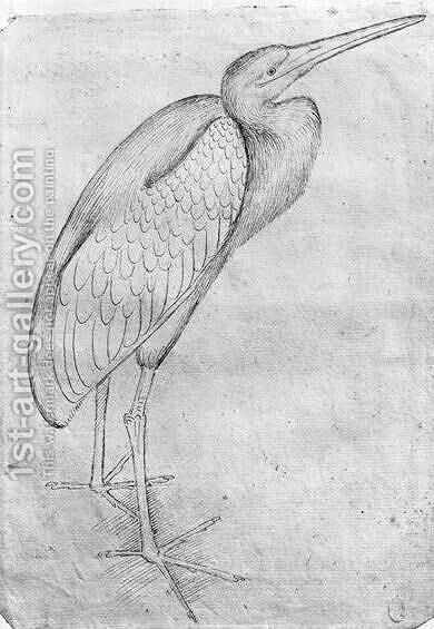 Pelican, from the The Vallardi Album by Antonio Pisano (Pisanello) - Reproduction Oil Painting