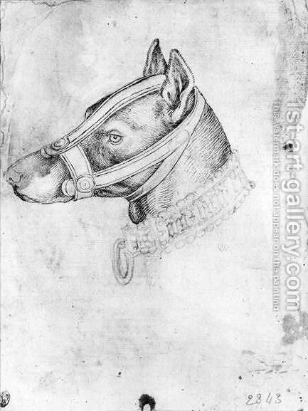 Head of a muzzled dog, from the The Vallardi Album by Antonio Pisano (Pisanello) - Reproduction Oil Painting