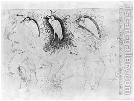 Fourteen egrets, from the The Vallardi Album by Antonio Pisano (Pisanello) - Reproduction Oil Painting