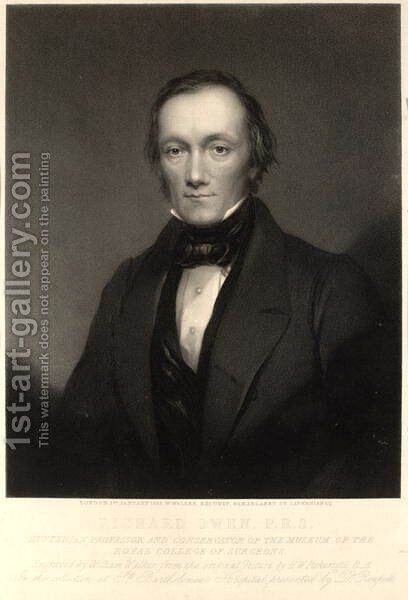 Sir Richard Owen by (after) Pickersgill, Henry William - Reproduction Oil Painting