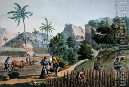 Island of Guam Agricultural Works, from Voyage Autour du Monde sur les Corvettes de LUranie 1817-20 engraved by Pomel, published 1825 by (after) Pellion, Alphonse - Reproduction Oil Painting
