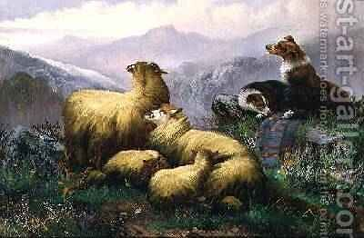Sheep Dogs and Sheep in the Scottish Highlands by J.W. Morris - Reproduction Oil Painting