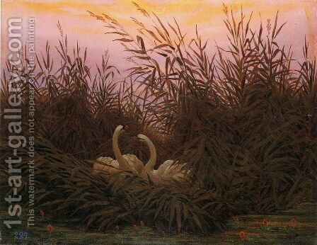Swans in the reed with first morning-red by Caspar David Friedrich - Reproduction Oil Painting