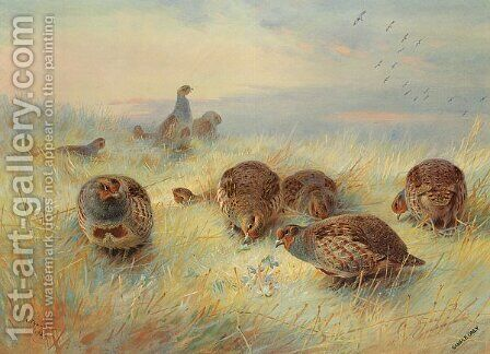 A Frosty Dawn by Archibald Thorburn - Reproduction Oil Painting