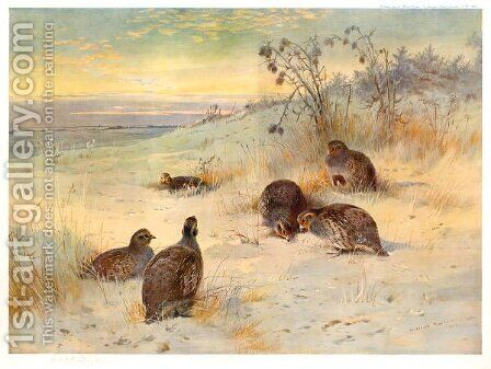 Close of a Winter's Day by Archibald Thorburn - Reproduction Oil Painting