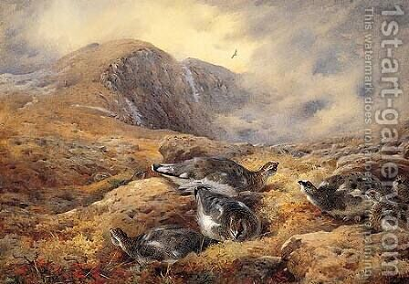 Danger Aloft by Archibald Thorburn - Reproduction Oil Painting