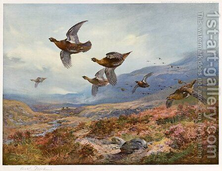 Grouse Over the Burn by Archibald Thorburn - Reproduction Oil Painting