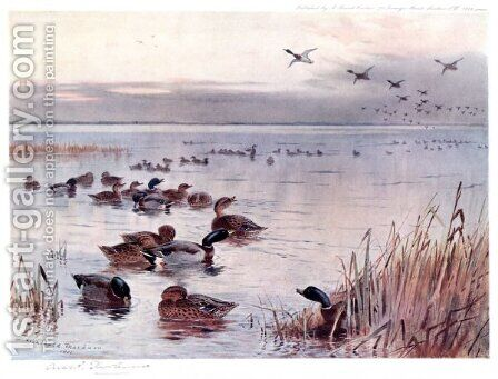 Mallard on the Lake at Sandringham by Archibald Thorburn - Reproduction Oil Painting