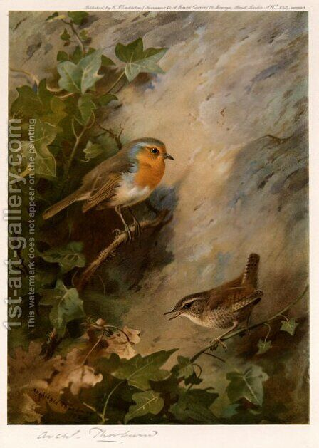 Robin and Wren by Archibald Thorburn - Reproduction Oil Painting
