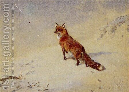 Startled by Archibald Thorburn - Reproduction Oil Painting