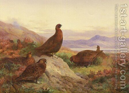 The Morning Call by Archibald Thorburn - Reproduction Oil Painting