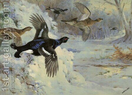 Through the Snowy Coverts by Archibald Thorburn - Reproduction Oil Painting
