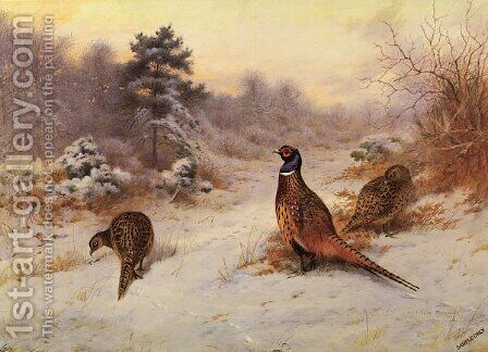 Winter's Sunset by Archibald Thorburn - Reproduction Oil Painting