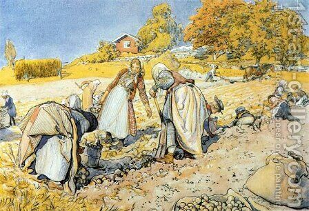 Potato Harvest by Carl Larsson - Reproduction Oil Painting