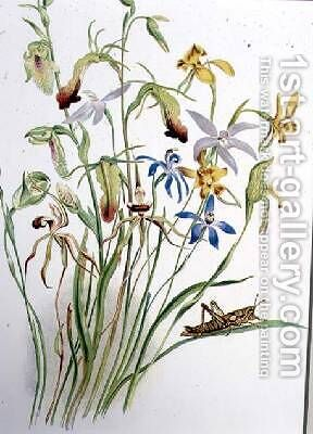 Iris and Blue Speedwell by Caroline Louisa Meredith - Reproduction Oil Painting