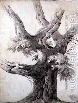 Study of a Tree 1823 by Alphonse Nicolas Michel Mandevare - Reproduction Oil Painting