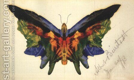 Butterfly 1893 by Albert Bierstadt - Reproduction Oil Painting
