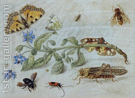 A Study of Insects 2 by Jan van Kessel - Reproduction Oil Painting