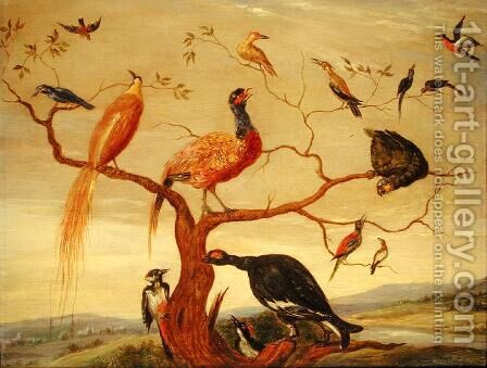 A Concert of Birds by Jan van Kessel - Reproduction Oil Painting