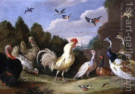 Wooded Landscape with a Cock Turkey Hens and other Birds by Jan van Kessel - Reproduction Oil Painting
