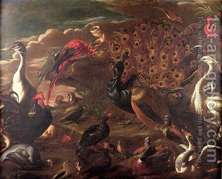 The Birds and the Beasts by Jacob van der (Giacomo da Castello) Kerckhoven - Reproduction Oil Painting