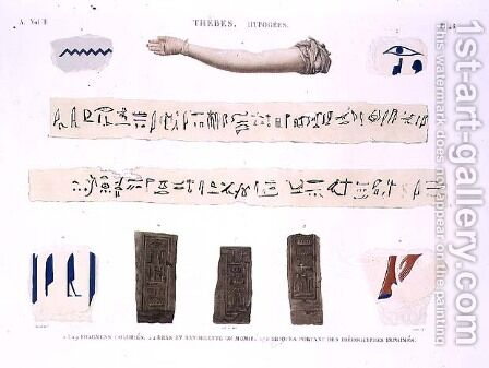 Illustrations of Hieroglyphics and the arm of a mummy from Hypogees by (after) Jomard - Reproduction Oil Painting