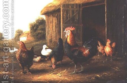 Chickens and Ducks in a Farmyard by A. Jackson - Reproduction Oil Painting