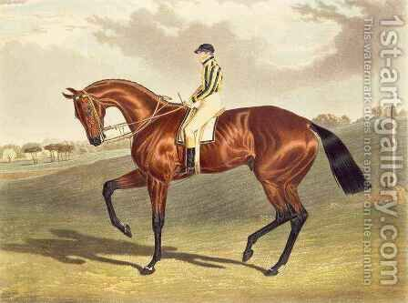 Bay Middleton winner of the Derby in 1836 by (after) Herring Snr, John Frederick - Reproduction Oil Painting