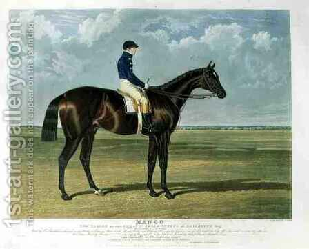 Mango the Winner of the Great St Leger Stakes at Doncaster by (after) Herring Snr, John Frederick - Reproduction Oil Painting