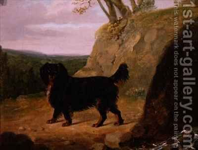 A Cocker Spaniel in the Landscape by E.W. Gill - Reproduction Oil Painting