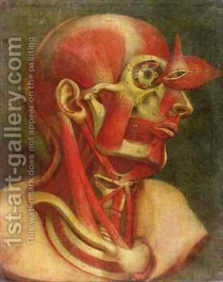Musculature of the face and neck by Jacques - Fabien Gautier - Dagoty - Reproduction Oil Painting