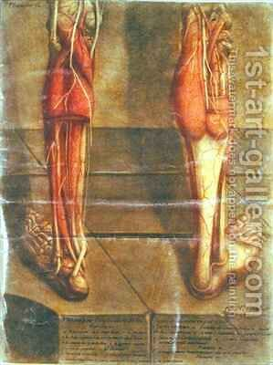 Musculature of the legs 2 by Jacques - Fabien Gautier - Dagoty - Reproduction Oil Painting