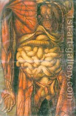 Torso of a man showing the intestines by Jacques - Fabien Gautier - Dagoty - Reproduction Oil Painting