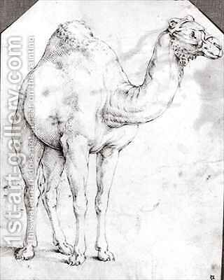 Camel by Battista Franco - Reproduction Oil Painting