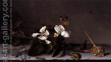 Still-Life with Apple Blossoms 2 by Balthasar Van Der Ast - Reproduction Oil Painting