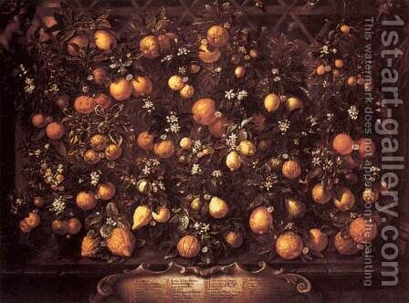 Citrus by Bartolommeo Bimbi - Reproduction Oil Painting